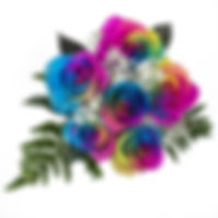rainbow roses.jpg