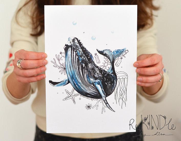 A4 Whale Art Print