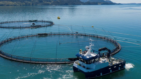 ZEM delivers hybrid work vessel to worlds first full electric fish farm