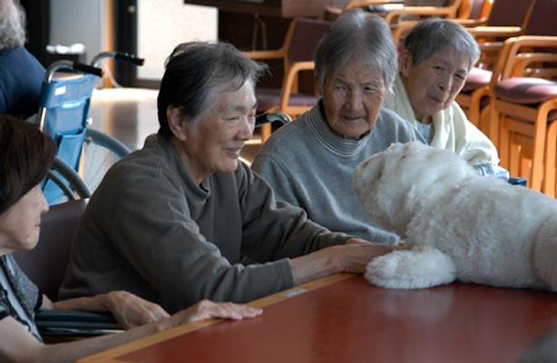 Elderly Family.png
