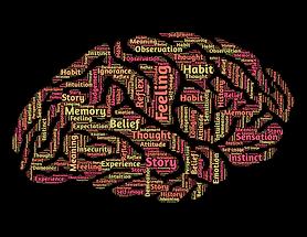 Brain health.png