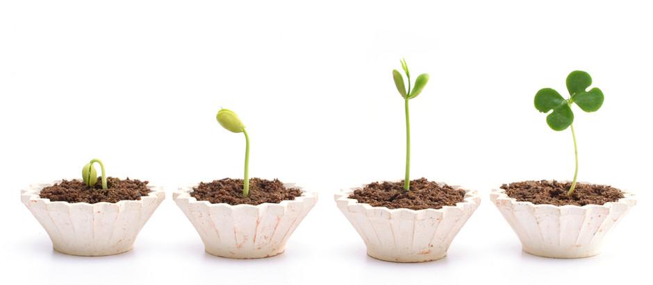 Madurez de la analítica en las organizaciones: ¿Es el análisis prescriptivo el de mayor valor?