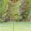 Blume Belle; Vidroflor; Metall; Blüte; 68002; Rostdeko; Galarosa