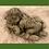 Vidroflor; Baby; in Hand; Nima; Steinguss; 114721; Troll Carlos; Magnus; Geburt