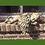 Engel Azur; liegend mit Vogel zum Stecken; Vidroflor; Steinguss; Antik; Mauer; schlafend; 116070; Gartenfigur; Galarosa