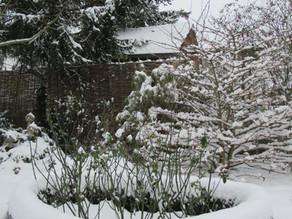 Gartenfiguren - welch Mehrwert, gerade im Winter
