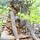 Baumhüterin Ahorn; Steinguss; Rosteffekt; Vidroflor; 116400R; Baumfrau sitzend; Gartenskulptur; Baumfigur; Gartendeko