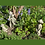 Erdmännchen; Zauberblume; Galarosa; Schaugarten; Bikerpaar; Kind; Alex; Familie; Stein; Betonguss; Gartenfiguren; Tiere; Beet