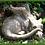 Drache Old Smug; blinzelnd; Fiona Scott; Vidroflor; Steinguss; Antik; Gartenfigur; Galarosa; Skulptur