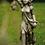 Walbewohner; Waldläuferin Hilde; Steinguss; Vidroflor; Waldbewohnerin; 114512; 114505; Antik; Gartenfigur; Waldfigur; Aurelia