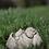 Sprössling; Seerose; Vidroflor; Steinguss; frostfest; Blüte; 114443; Gartendeko; Blumendeko; Gartenfigur