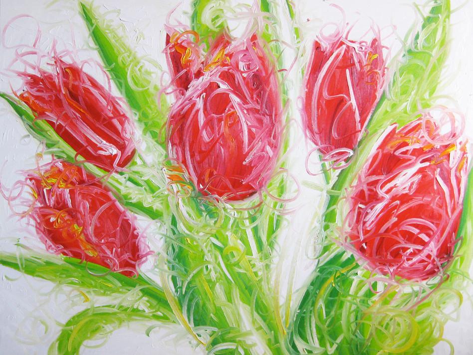 Tulippes en folie