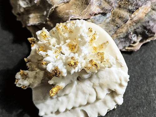 GOLDEN CORAL BROOCH