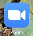 zoom_icon.jpg