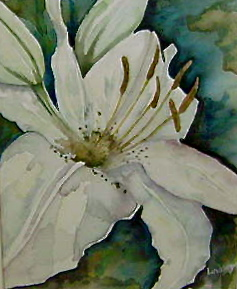 white lily painting floral art