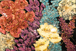abstract floral painting flower art