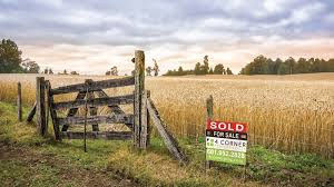 9.29.19 - Field for Sale-small.jpeg
