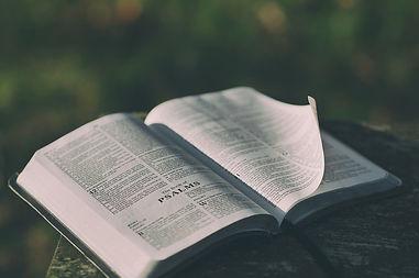 Bible - Open to Psalms.jpg