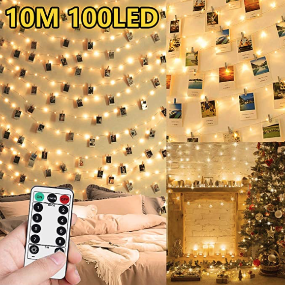 10M 100LED with Pegs