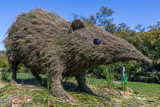 The Big Bandicoot, Cranbourne Gardens