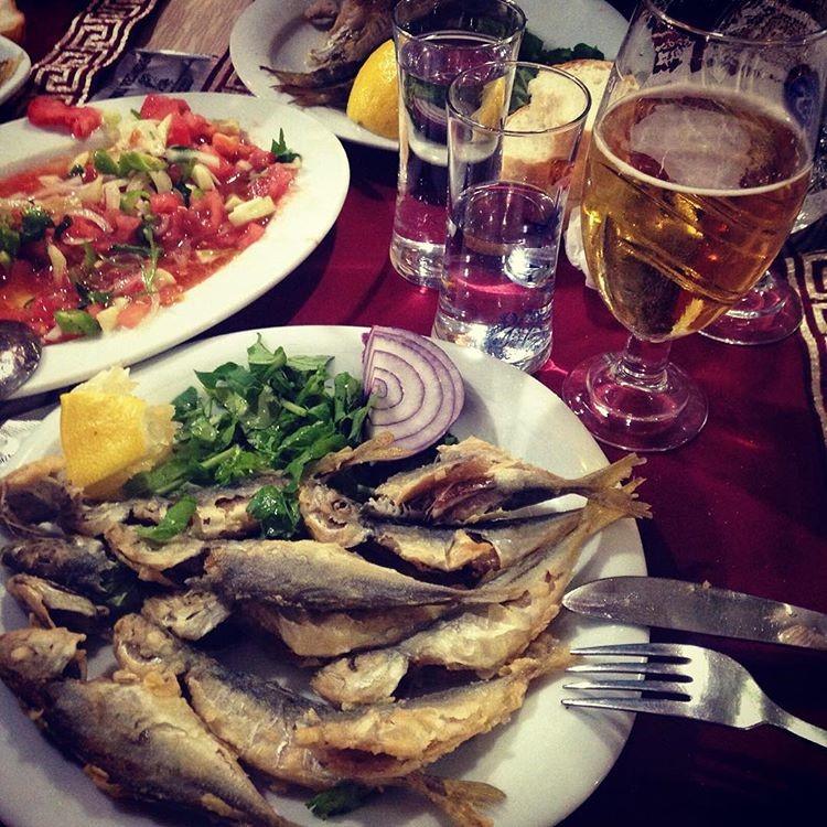 Meraklı Balık