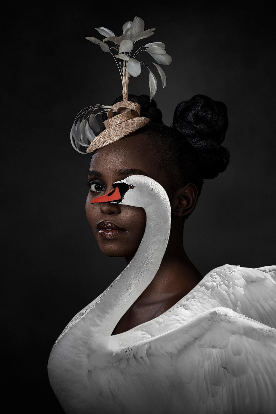 The swan countess.jpg