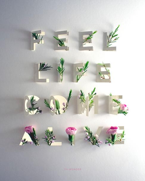 Feel Life Come Alive