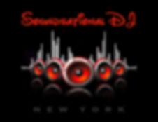 Hudson Valley DJ Service Logo