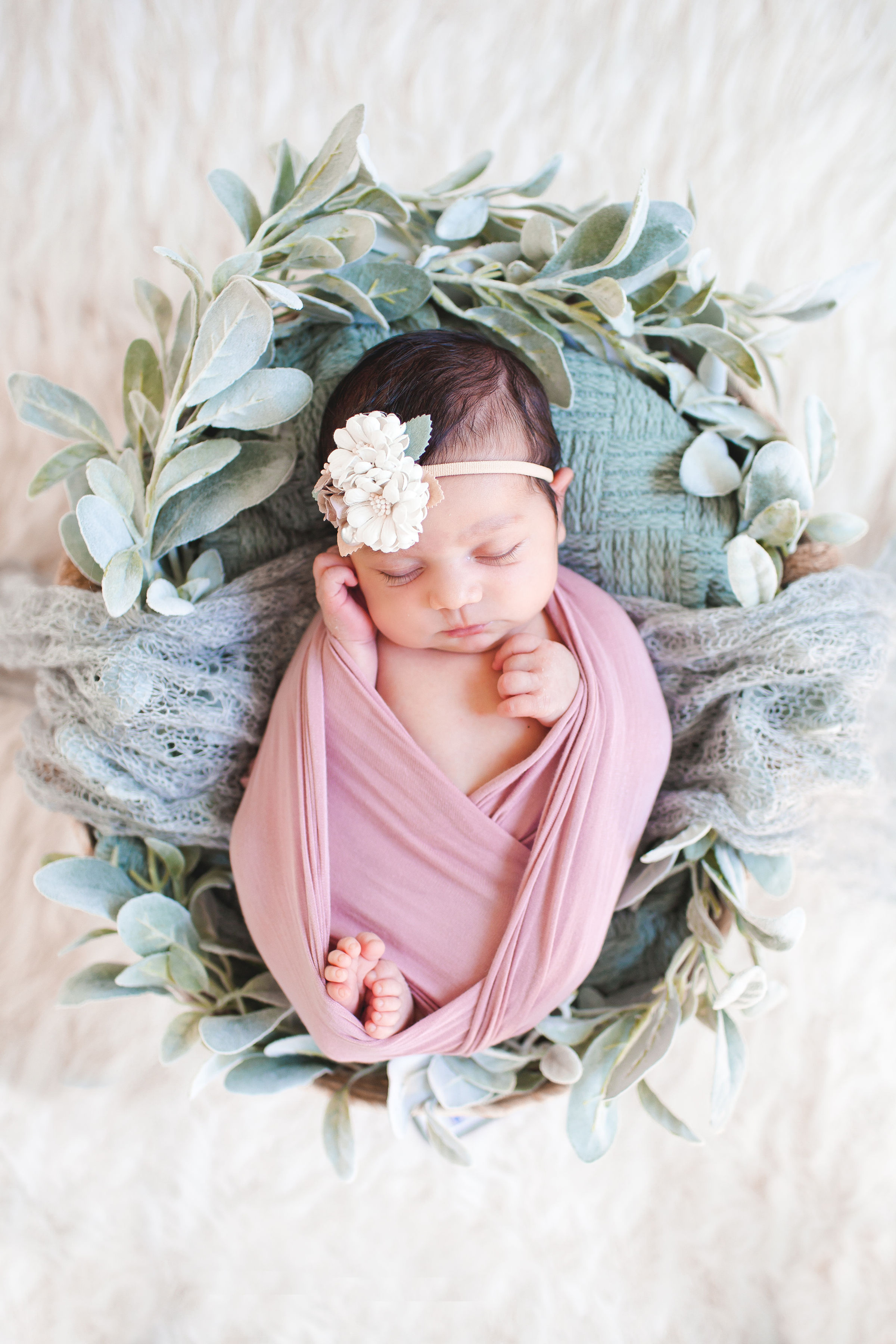 Newborn Photography - Please Email First