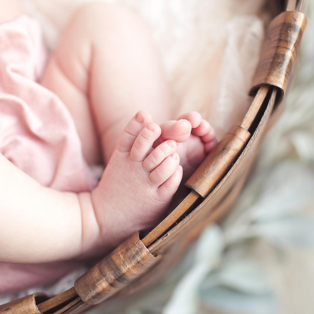 Newborn Clara Sneak Peeks