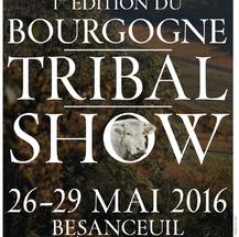 Bourgogne Tribale Show, Mai 2016 - Alexi