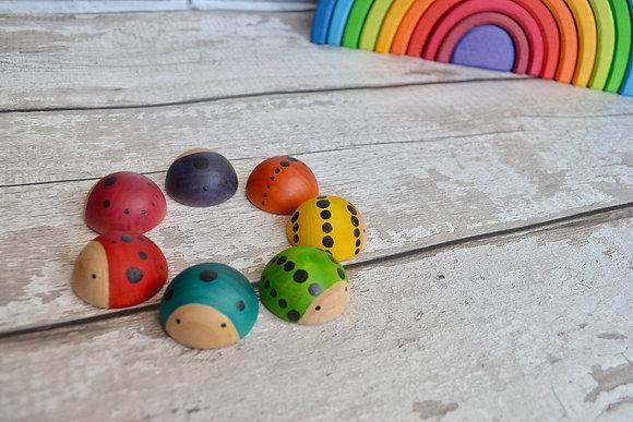 Rainbow Ladybirds