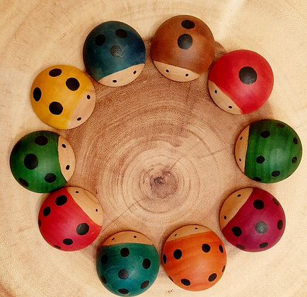 10 Counting  Ladybirds
