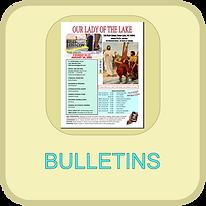 WEB BLOCK BULLETINS.png