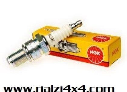 4 spark plugs Panda 1400 since 2006 and Panda 900 cc since 1980