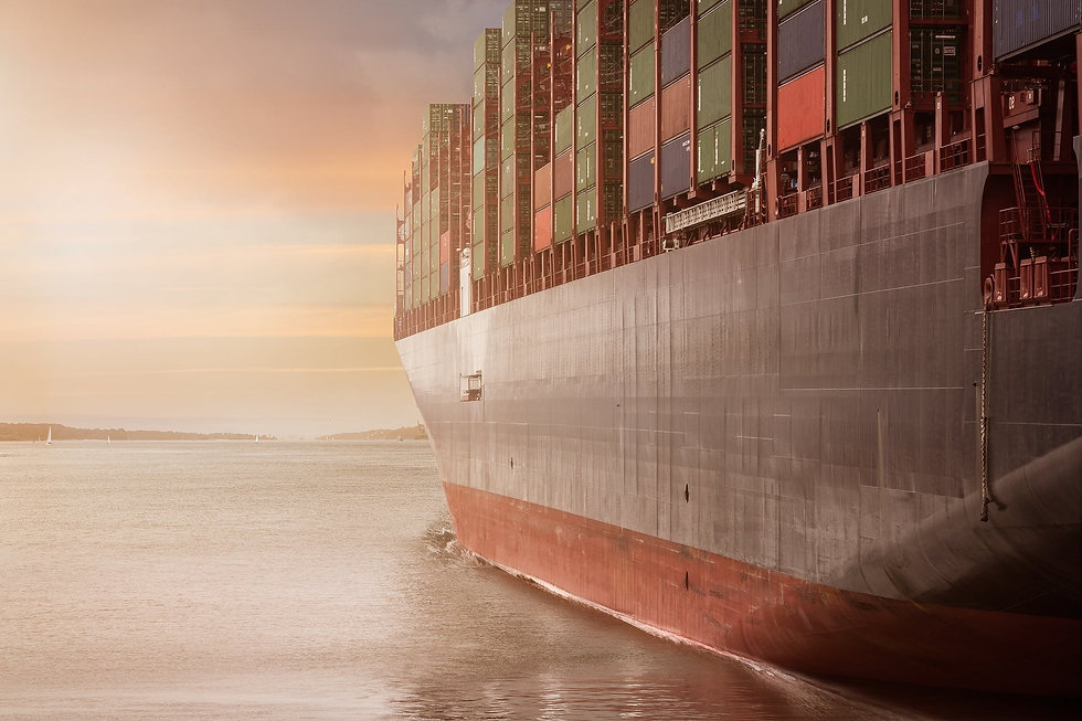 cargo%20transport_edited.jpg