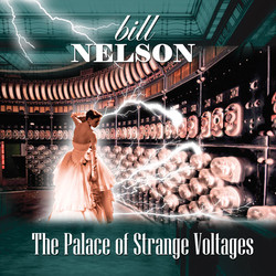 Palace Of Strange Voltages - Cover