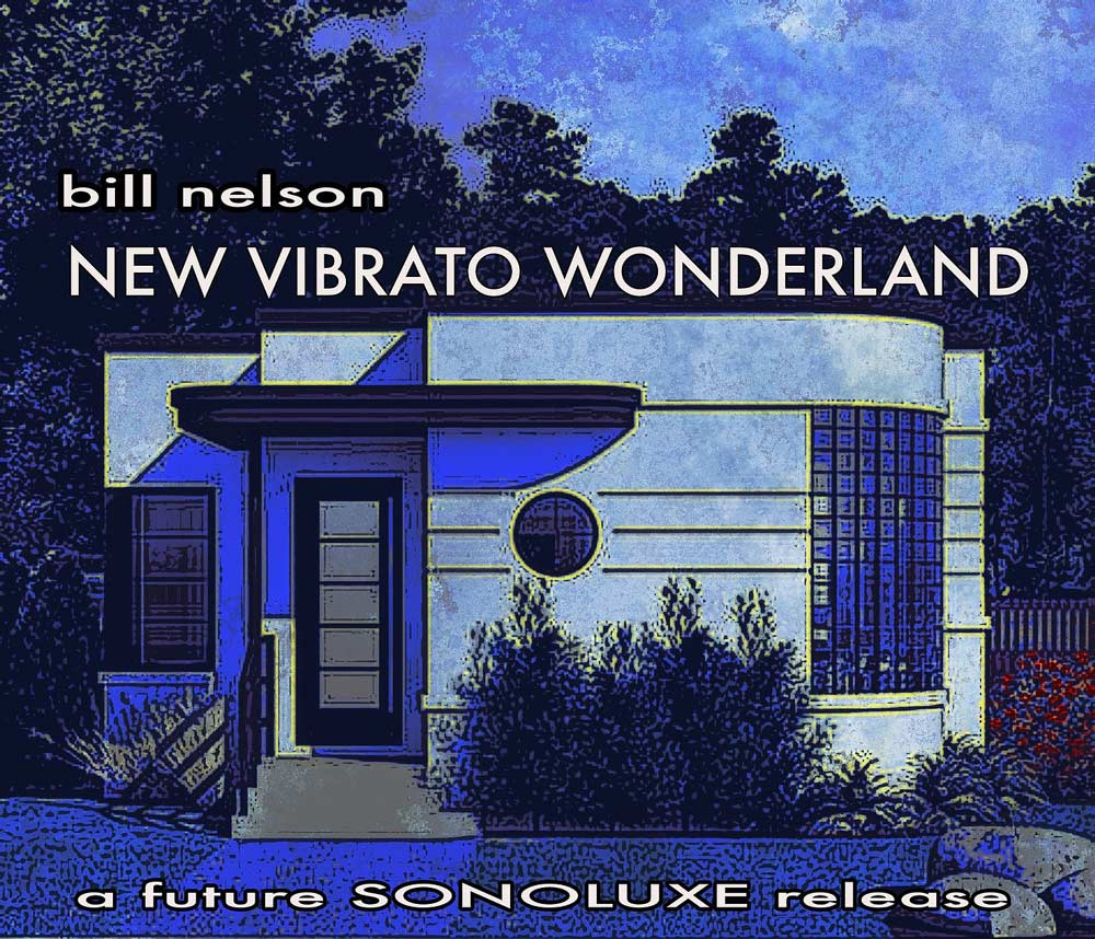 New Vibrato Wonderland Flyer
