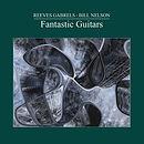 Fantastic Guitars - Cover