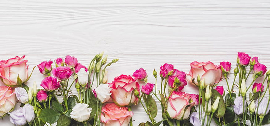 flowers-background-roses-eustoma-wallpap