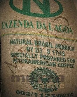 Brasil Fazenda edícia Rainforest