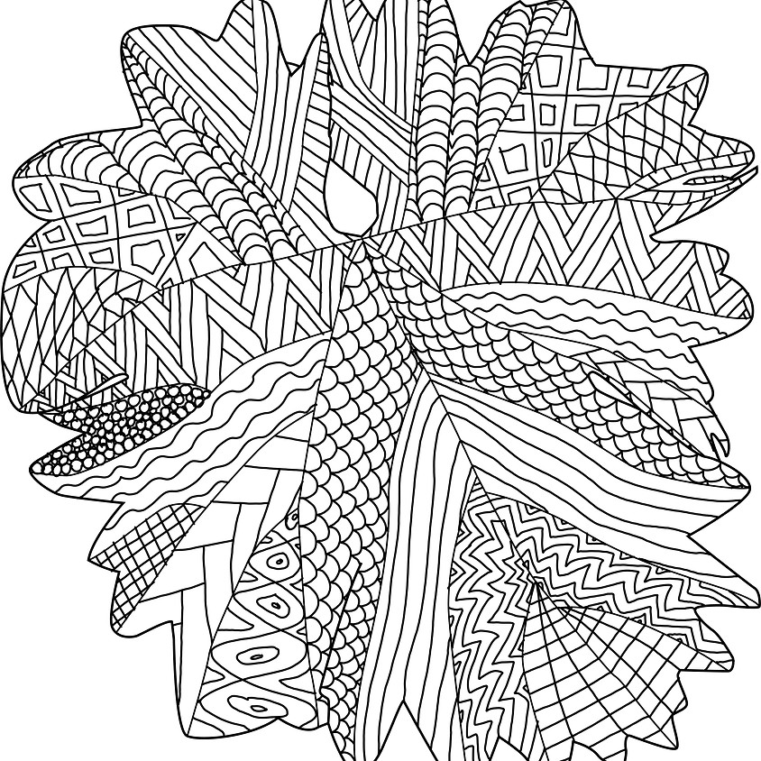 Tegn med naturens mønstre – en oplevelse for alle sanser i Forundringens Have (Timelding på forundringenshave.dk)