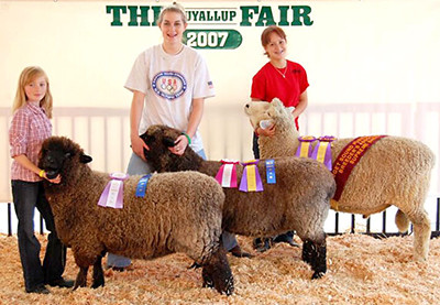 Ezzie winning champion lamb