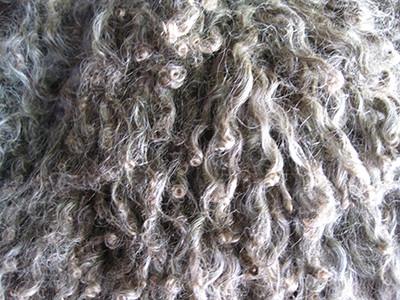 Magnus' fleece