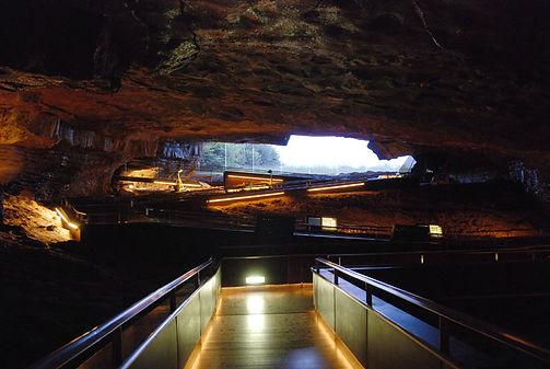 R-224 CANTABRIA Cuevas de Altamira Museo