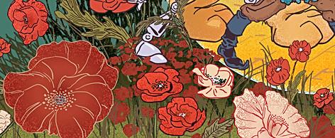 Poppy Flower Details