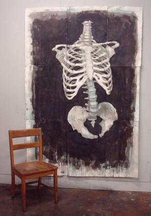 Skeleton Torso Study