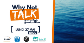 Intervention au Why Not Talk de The Why Not Factory : Stratégie Océan Bleu