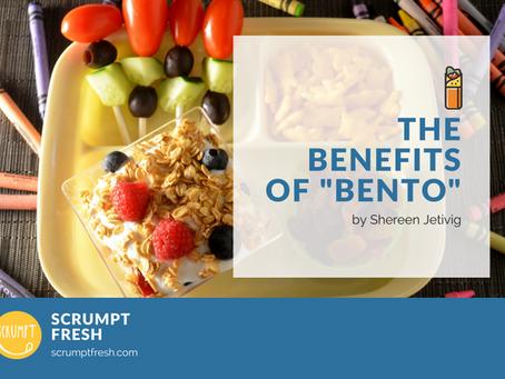 The Benefits of Bento