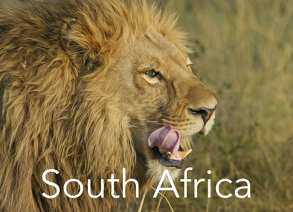Tracking & Field Guiding in South Africa